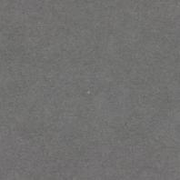 grigio-01